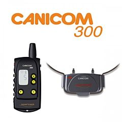 11612 Canicom
